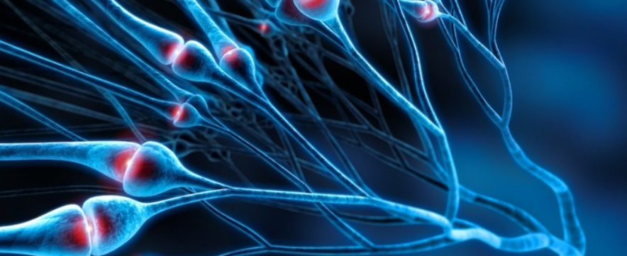 BPM Fundamentals in Pain Management: 3 modules